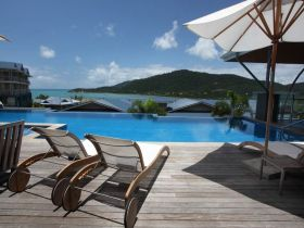 airlie beach accommodation