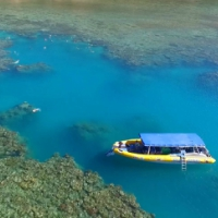 whitsundays snorkelling