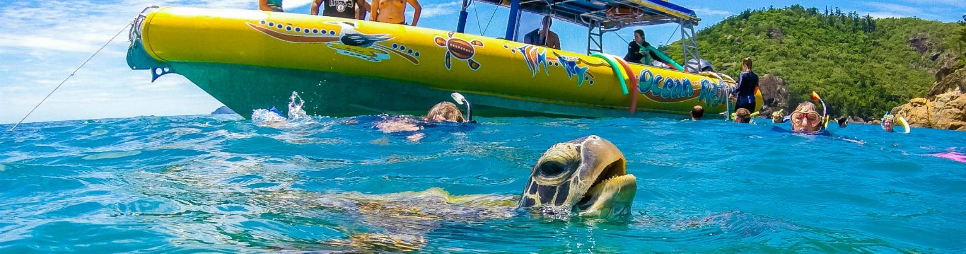 Whitsundays snorkelling - Ocean Rafting Northern Exposure
